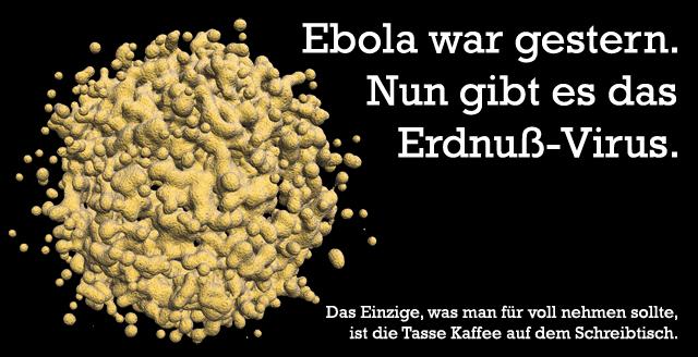 Erdnuß-Virus